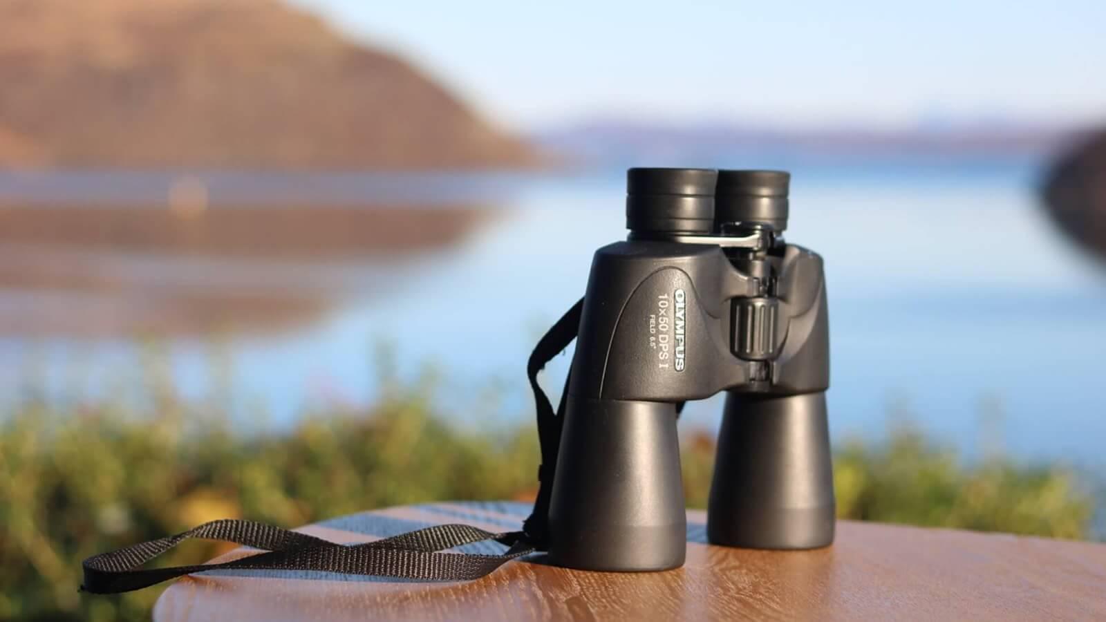 Birdwatching, Skye